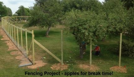05 Fencing