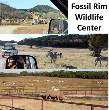 09 Fossil Rim 2